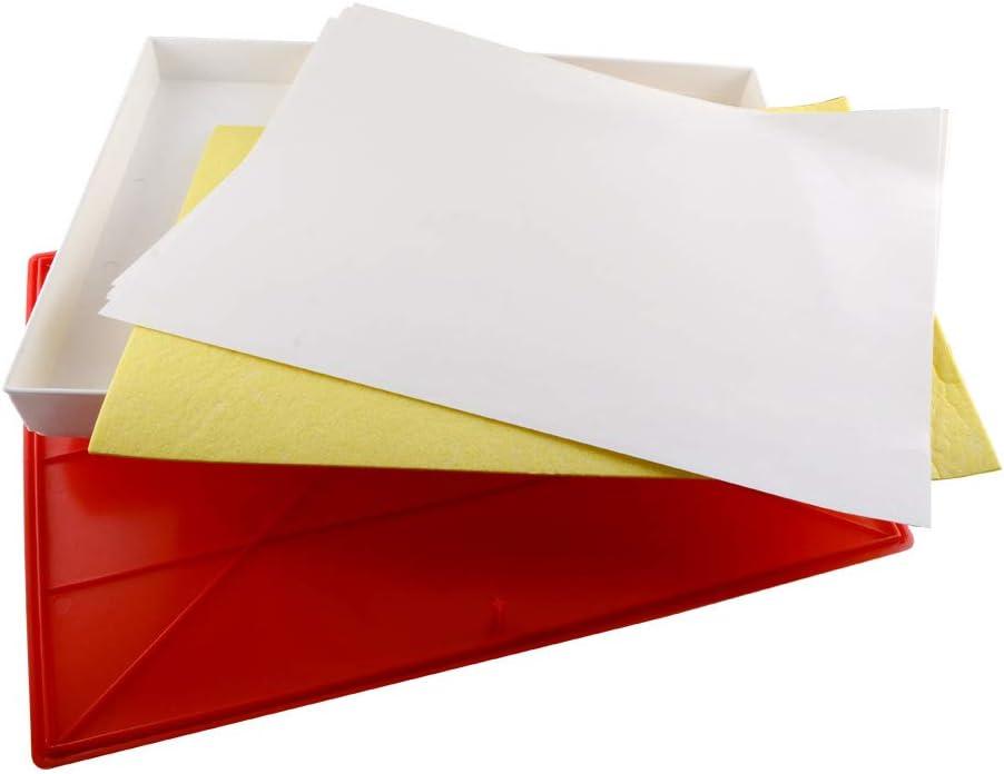 Standard Masterson Sta-Wet airtight Box Premier Palette White