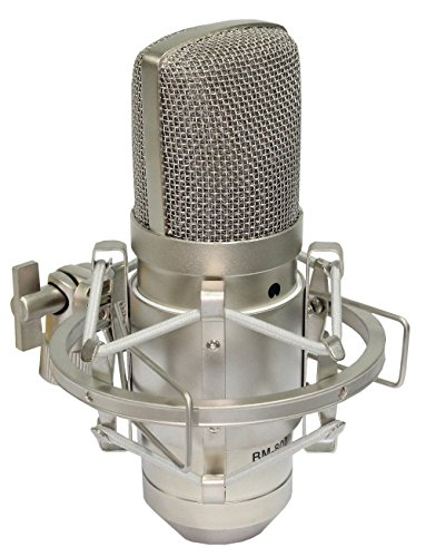 iSK BM-800 Broadcasting and Recording Condenser Microphone