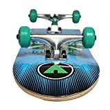 Airwalk-Undone-Skull-Skateboard