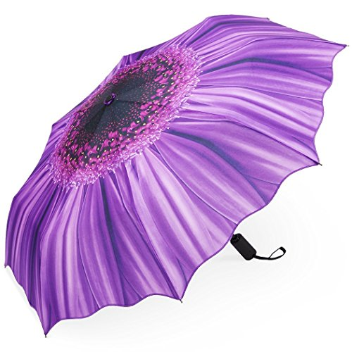 Plemo Automatic Umbrellas, Windproof Purple Daisy Design Compact Folding Umbrellas with Anti-Slip Rubberized Grip, for Business and Travels or Summer Gifts