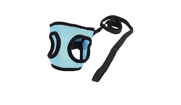 Amazon.com : Los Mascotas Ruta Correa reticular del Chaleco del arnés S Azul Claro Negro : Pet Supplies