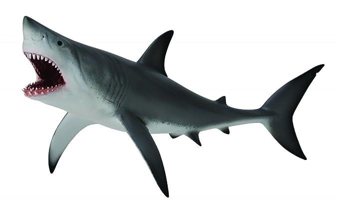 Gemütlich Realistische Großen Weißen Hai Malvorlagen Bilder - Ideen ...