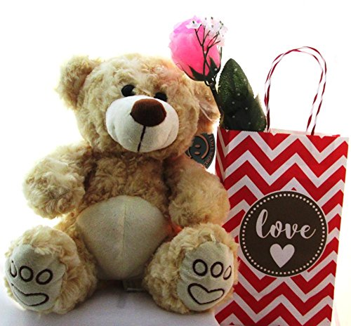 (DBK Gifts Plush Soft Teddy Bear with Spa Essentials for Mom Wife Girlfriend Daughter Granddaughter)