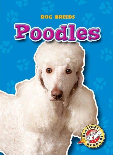 Poodles (Paperback)(Blastoff! Readers: Dog Breeds) (Dog Breeds: Blastoff Readers, Level 4) (Cover Poodle)