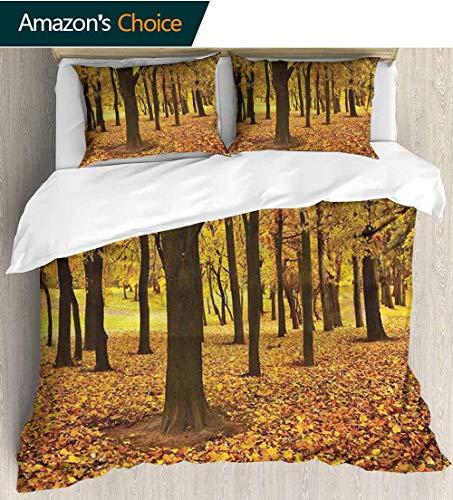 shirlyhome Landscape Full Queen Duvet Cover Sets,Golden Fallen Leaves Covered Ground Autumn Forest Nature Picture Kids Bedding-Does Not Shrink or Wrinkle 90