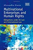 Multinational Enterprises and Human Rights, Gatto, 1848440340