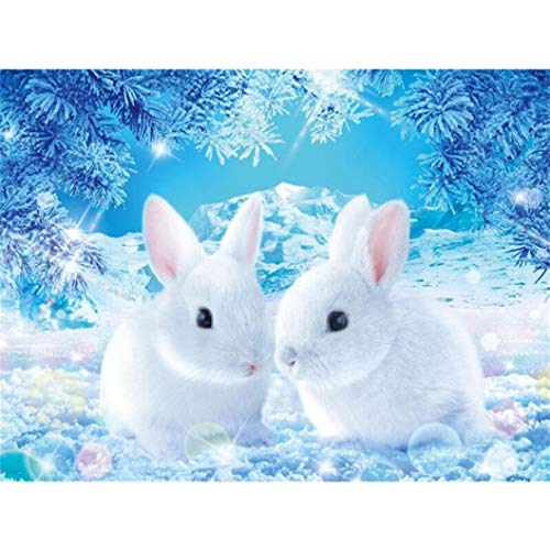 Cinhent Diamond Painting, 5D Embroidery Rhinestone Pasted DIY, 30 × 40CM, Ice Crystal World + Two Cute Little White Rabbits, Washroom/Home / Office Wall Decor Gifts for Adults Kids ()