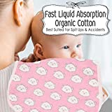 Organic Burp Cloths for Baby Boys and Girls
