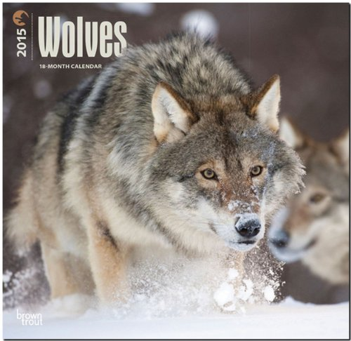 Wolves 2015 Square 12x12