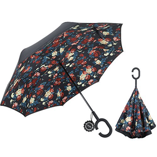 Amazing Umbrellas