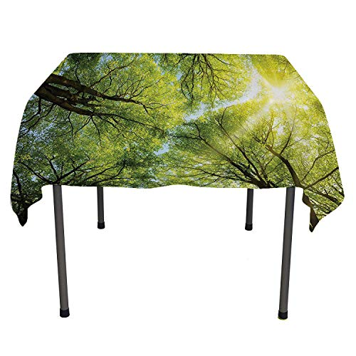 Farm House Decor Collection, Waterproof Tablecloths The Warm Spring Sun Shining Through The Canopy of Tall Beech Trees Romantic Scene, Home Decoration Outdoor, 70x70 Inch Green Yellow