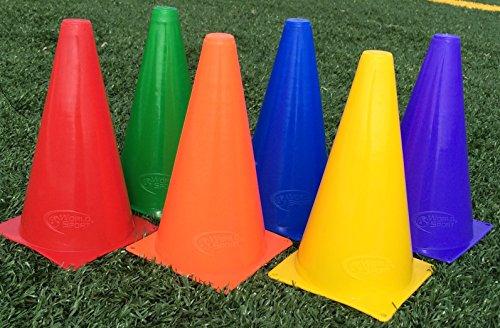 World Sport Multi Color Nine Inch Cone - Colored Cone