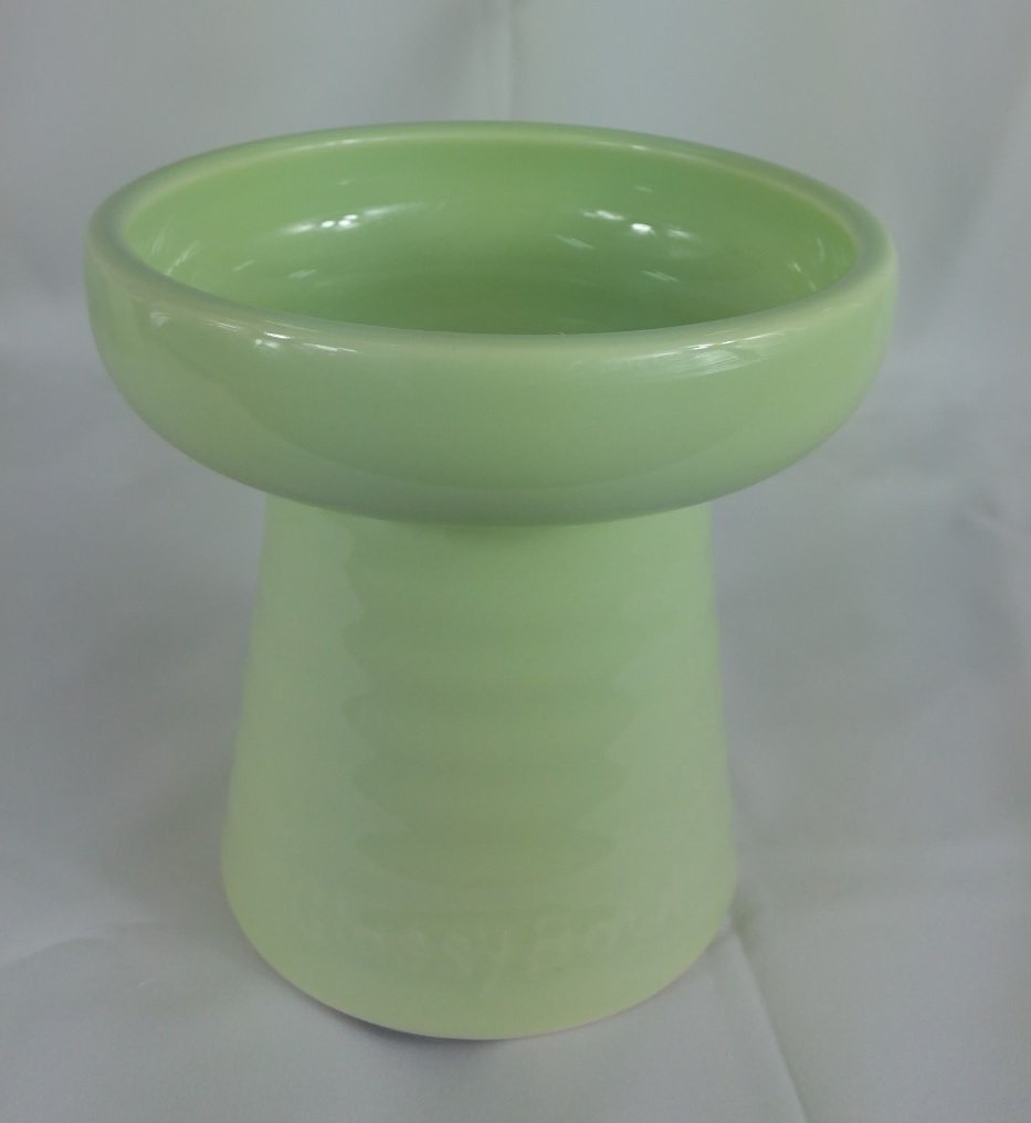Raised Porcelain 8 oz. Pet Bowl for Dry Food or Water (Wt. 1.5 lb) Green