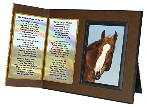 Rainbow Bridge Poem for Horses Sympathy Picture Frame Gift and Memorial Keepsake , Deep Rich Brown with Foil Accent