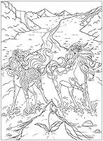 Mein Malbuch Einhörner Zauberpferde 96 Ausmalbilder Amazonde