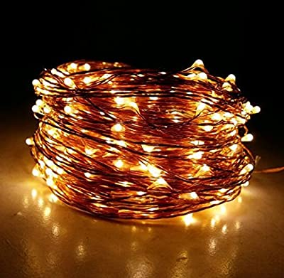Dreamworth 165ft 500 LED Warm White Copper Wire String Fairy Light Lamp Decoration Lighting with 12V AC Adapter for Christmas Party Wedding(50m)