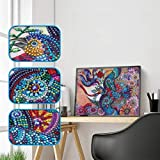 Allywit 5D Special Shaped Diamond Painting DIY Kits Art Paint with Diamonds Embroidery Paintings Pictures Arts Craft for Decor Kit Home Wall Decor