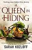 A Queen in Hiding (The Nine Realms Book 1)