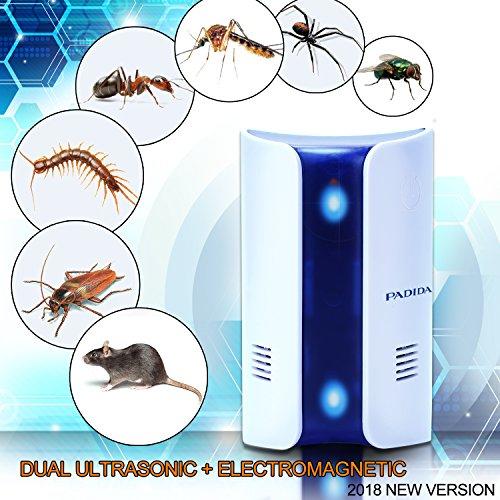 The 8 best pest control treatment kits