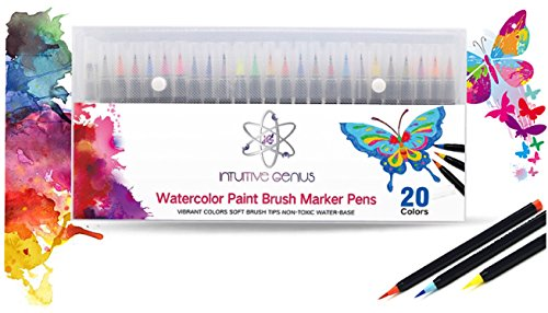 Watercolor Brush Pens - Set Of 20 Colors Soft Flexible Tip Includes 1 Water Brush Pen Nylon, Vibrant Colors - For Professional Adults & Children Coloring Books,Comic,Calligraphy,Manga, Art,Writing