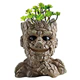 Anpatio Head Planter Stone Man Succulent Plant Pot Resin Cute Cactus Bonsai Pot Pens Holder with Drainage Hole Perfect Gift Idea for Gardener for Birthday 5.5 inch