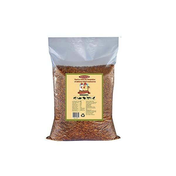11lbs Bulk Non-GMO Dried Mealworms for Reptile, Tortoise ; Amphibian,Lizard ;Wild Birds; Chichens; Duck etc 7