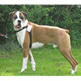 Non Pull. Front Leading Harness Fits Dogs Weighing 55 - 120 Llb (25 - 54 kg) Girth Size 26 - 39 ins (66 - 99 cms) BLACK