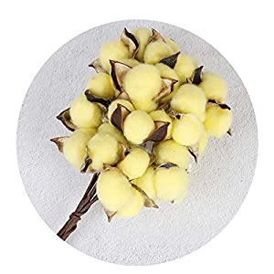 Endand 10/pcsScented Home Wedding Party Decoration Natural Cotton Color Single Dried Flowers DIY Crafts from Artificial Flowers,D 62