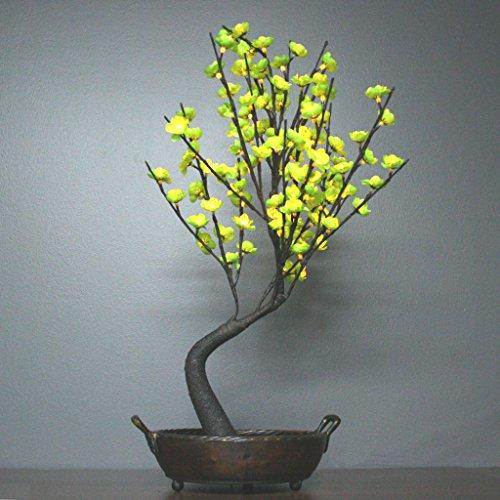 The Light Garden Bonsai Tree - 2