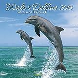 Wale und Delfine 2018: Broschürenkalender mit Ferienterminen. Tierkalender von Fischen. 30 x 30 cm