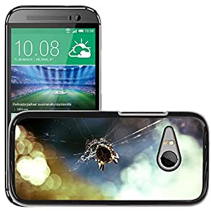Hot Style Cell Phone PC Hard Case Cover // M00117344 Garden Spider Spider Insect // HTC One Mini 2 / M8 MINI / (Not Fits M8)