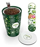 Steep & Strain Ceramic Tea Mug - Insulated Cup with Tea Infuser - Gift Travel Coffee Mug - Available in 5 Patterns - Comes with Free Silicone Lid