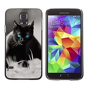 Stuss Case / Funda Carcasa protectora - Cute Black Cat Siamese White Pet Kitten - Samsung Galaxy S5 SM-G900