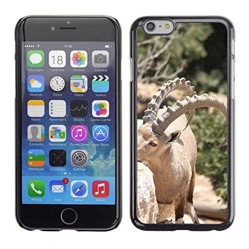 """Bild Hart Handy Schwarz Schutz Case Cover Schale Etui // M00135449 Ibex Tierhörnern Biologie Säugetier // Apple iPhone 6 PLUS 5.5"""""""