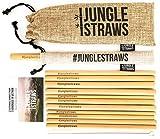 Jungle Straws | 12 Reusable Bamboo Drinking Straws | 100% Natural & Eco Friendly | Biodegradable &...