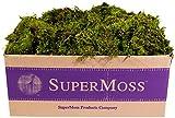 SuperMoss (22167) Sheet Moss Mini (Shredded) Preserved, Fresh Green, 3lbs