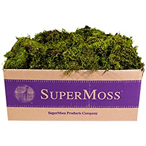 Super Moss 7 59834 22167 8 B00I6AJD5Y, Appx. 3 lb Bulk Case Fresh Green