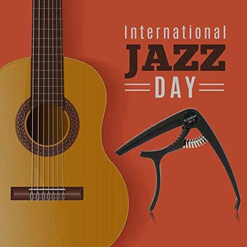 Florenceenid Cejilla de Guitarra eléctrica, Ligera, cejilla para Guitarra acústica: Amazon.es: Hogar