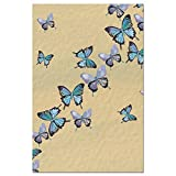 Tree-Free Greetings EcoNotes Stationary- Blank Note Cards with Envelopes, 4'' x 6'', Blue Butterflies in Flight, Boxed Set of 12 (FS66475)