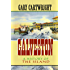 Galveston: A History of the Island (Chisholm Trail Series)