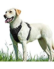 Eagloo Dog Harness No Pull, Walking Pet Harness with 2 Metal Rings and Handle Adjustable Reflective Breathable Oxford Soft Vest Easy Control Front Clip Harness for Small Medium Large Dogs, Black, L
