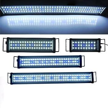 Lámpara Techo LED Light Luz Azul Blanca 42 W para acuario Dolce Marino: Amazon.es: Productos para mascotas