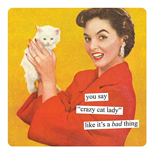 (Anne Taintor Square Magnet, You Say Crazy Cat Lady Like It's A Bad Thing)