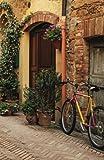 Internet Password Organizer: Tuscany (Discreet Password Journal)