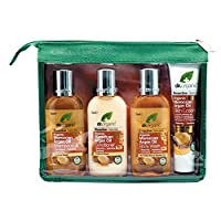 DR ORGANIC Mini Travel Pack Organic Moroccan Argan Oil, 4 Count