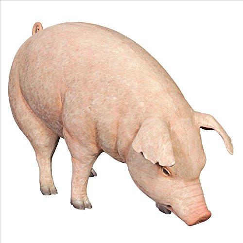Design Toscano Divine Swine Life-Size Farm Pig Statue, Mu...