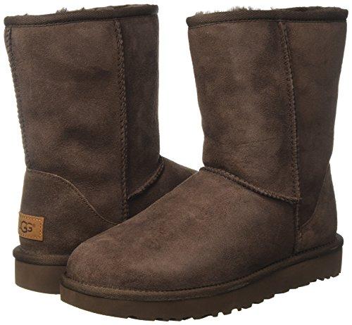 chocolate Australia Ii Short Classic Boots Ugg Brown Cho Women''s 8wxaFAqdT