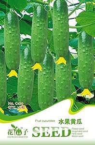Verdes semillas de pepino de fruta, paquete original, 20 semillas / paquete, dulce crujiente fruta comida cruda C100