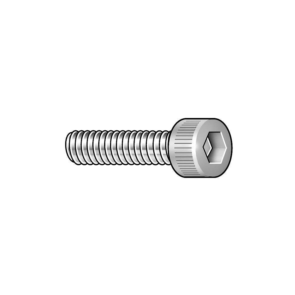 "Qty 100 1//4-20 x 1/"" Stainless Steel Socket Head Cap Screw Standard 18-8"