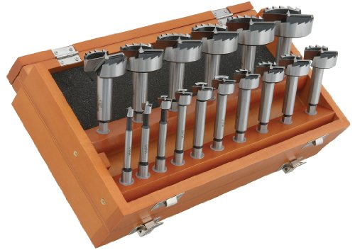 Steelex D3573 Forstner Bit Set with Hex Shank, 16-Piece